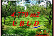 4,770 m2 LAND FOR SALE IN UBUD BALI TJUB598