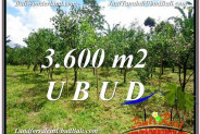 FOR SALE Affordable 3,600 m2 LAND IN UBUD BALI TJUB599