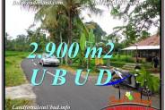Beautiful LAND FOR SALE IN UBUD TJUB586