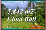Exotic 5,842 m2 LAND FOR SALE IN UBUD BALI TJUB638