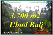 Beautiful PROPERTY 3,700 m2 LAND FOR SALE IN Sentral / Ubud Center TJUB640