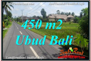 Beautiful LAND IN UBUD FOR SALE TJUB647