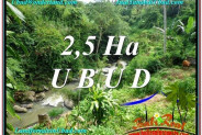 FOR SALE Magnificent PROPERTY 26,000 m2 LAND IN Sentral Ubud TJUB579