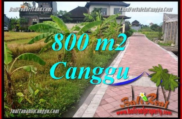 Magnificent LAND SALE IN Canggu Brawa TJCG221