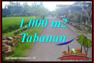 FOR SALE Magnificent PROPERTY 1,000 m2 LAND IN Tabanan Selemadeg Timur TJTB363