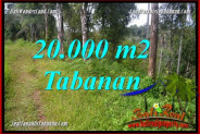 Affordable 20,000 m2 LAND FOR SALE IN Tabanan Selemadeg Timur TJTB365