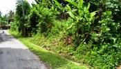 TJUB040 land for sale in ubud bali