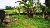 TJUB048 land for sale in ubud bali