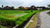 TJUB052 land for sale in ubud bali 05