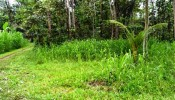TJUB069 land for sale in ubud bali 06