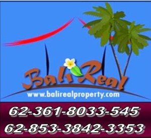 Bali Land and Property for sale