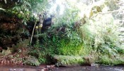TJUB093 land for sale in ubud bali 26