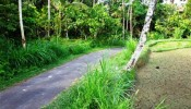 TJUB094 land for sale in ubud bali 05