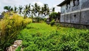 TSUB005 land for rent in ubud, bali 05