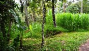 TJUB069 land for sale in ubud bali 05