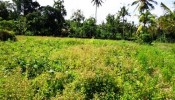TJUB088 land for sale in ubud bali 08