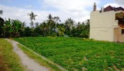 TJUB088 land for sale in ubud bali 12