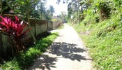TJUB089 land for sale in ubud bali 06