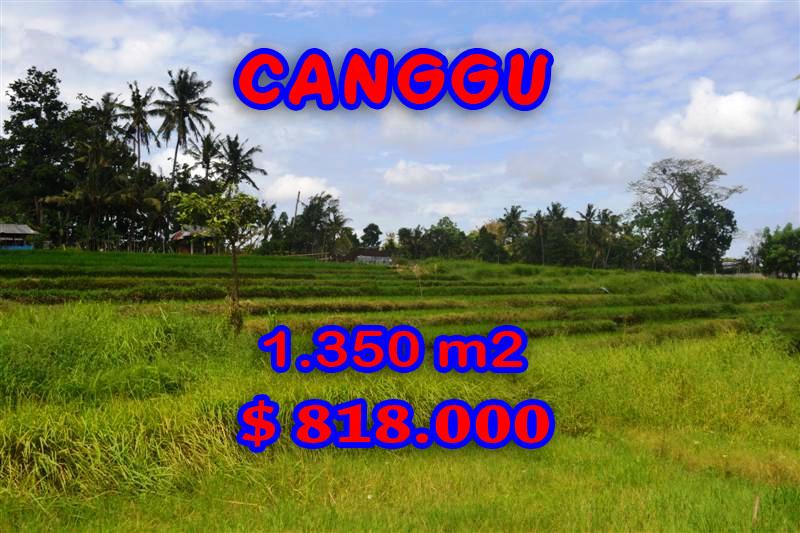 Canggu-Land-for-sale