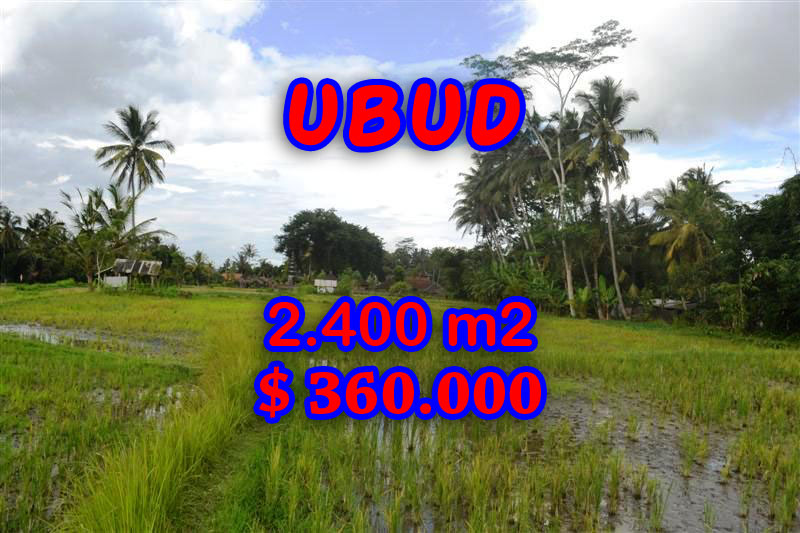 6. Land in Ubud Bali for sale