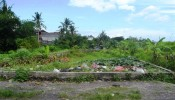 TJCG112 Land for sale in Canggu Bali