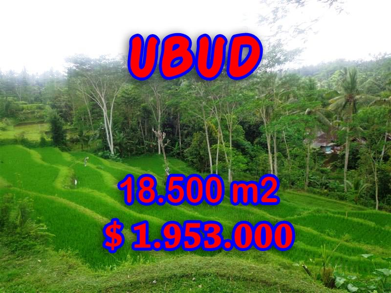 Land sale in Ubud