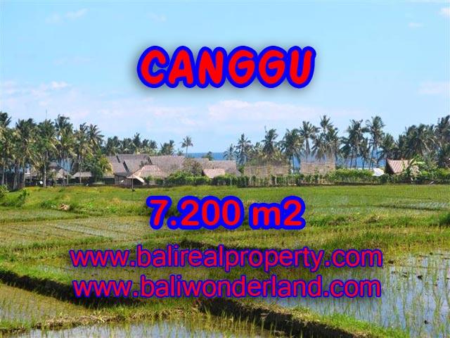 Tanah di Canggu dijual