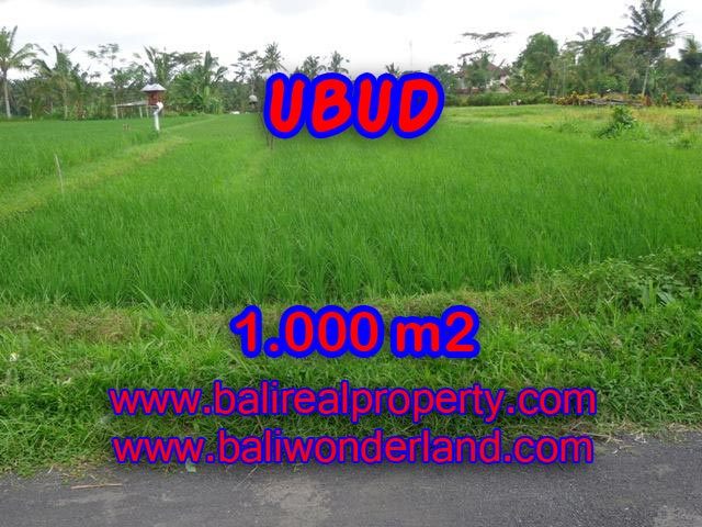 Land for sale in Ubud Bali, Unbelievable view in Ubud Tampak siring – TJUB345