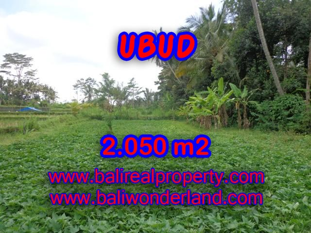 Extraordinary Land for sale in Ubud Bali, rice field view in Ubud Pejeng – TJUB344