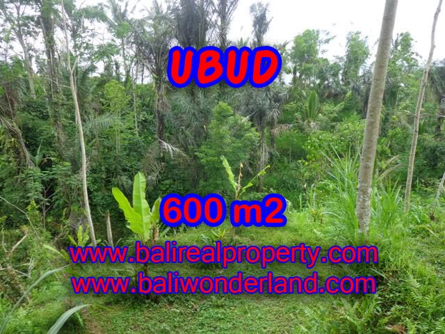 Land for sale in Ubud Bali, Astounding view in Ubud Tegalalang – TJUB346