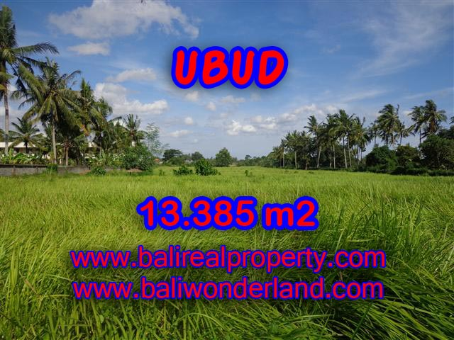Land in Ubud Bali for sale, Outstanding view in Central Ubud – TJUB357