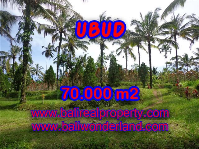 Interesting Land for sale in Ubud Bali, mountain and paddy view by the river in Ubud Payangan – TJUB358
