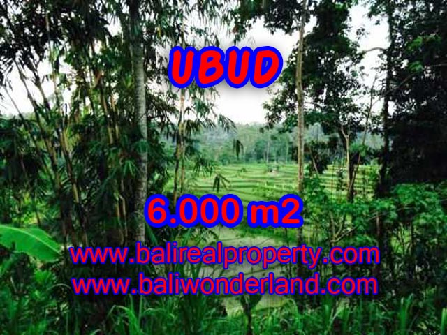Fantastic Land for sale in Ubud Bali, rice field, cliff, and Ayung River view in Ubud Center – TJUB349