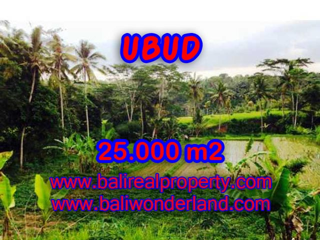 Land for sale in Ubud Bali, Magnificent view in Central Ubud – TJUB350