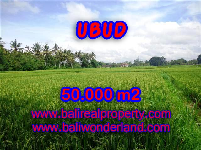 Land for sale in Ubud, Fantastic view in Central Ubud Bali – TJUB351