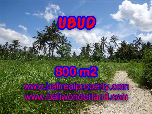 Land in Ubud Bali for sale, nice view in Central Ubud Bali – TJUB352