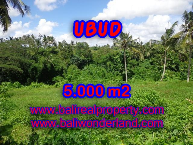 Land in Ubud for sale, Amazing view in Central Ubud Bali – TJUB353