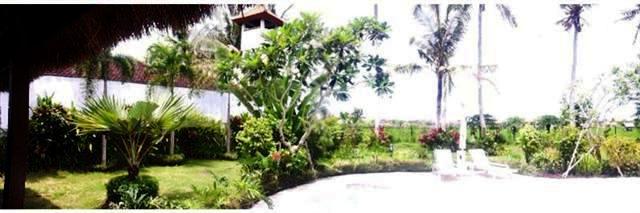 VSCG004 - Villa disewakan ( Villa for rent ) di Canggu Bali 12
