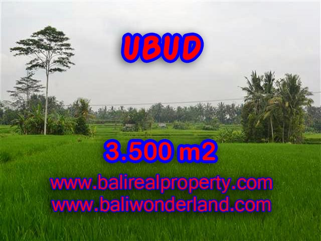 Land for sale in Ubud, Magnificent view in Ubud Pejeng Bali – TJUB361