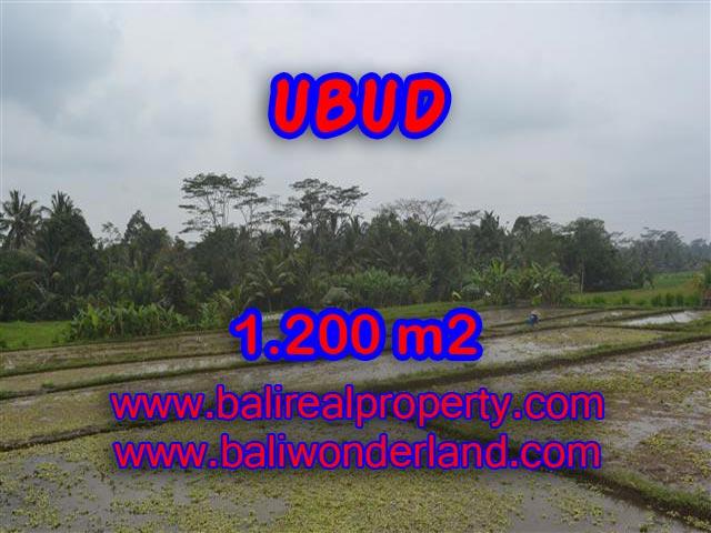 Land for sale in Ubud Bali, Wonderful view in Ubud Payangan – TJUB360