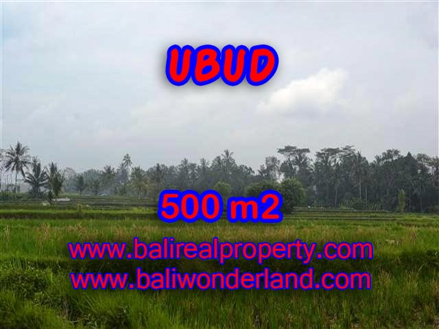 Extraordinary Land for sale in Ubud Bali, Mountain and paddy field view in Ubud Pejeng– TJUB363