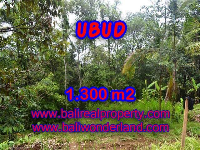 Land in Ubud Bali for sale, Outstanding view in Ubud Pejeng – TJUB362