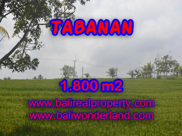 Land in Tabanan Bali for sale, Beautiful Beach and paddy view in SOKA TABANAN – TJTB083