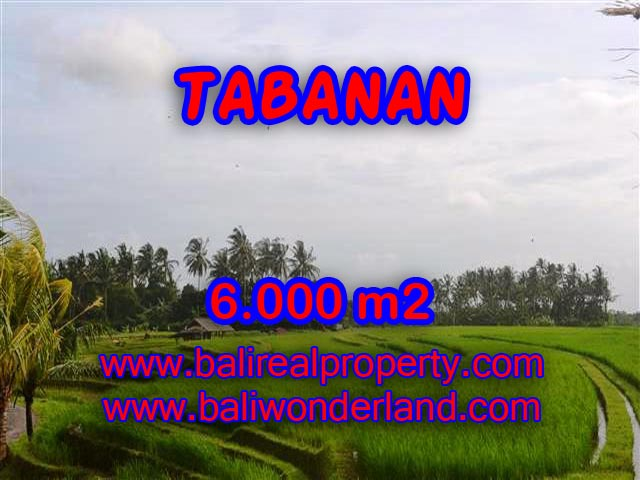 Land in Tabanan Bali for sale, Outstanding view in Tabanan soka – TJTB093