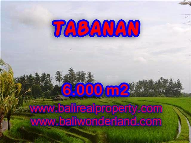 Land in Tabanan Bali for sale, Outstanding view in Tabanan soka – TJTB093