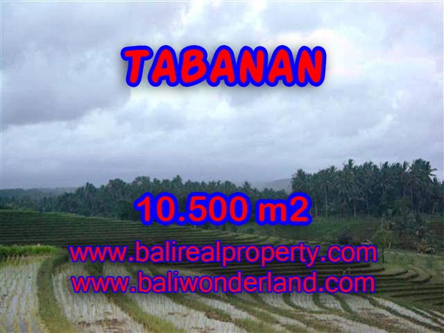 Interesting Land for sale in Tabanan Bali, mountain, river, rice field, and beach view in Tabanan Selemadeg– TJTB095