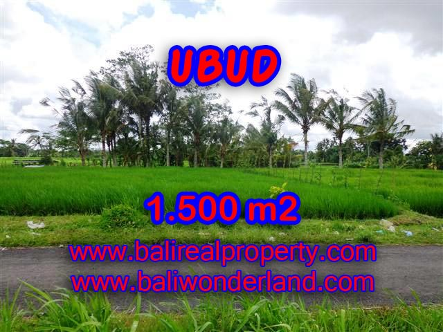 Land for sale in Bali, magnificent view Ubud Bali – TJUB369