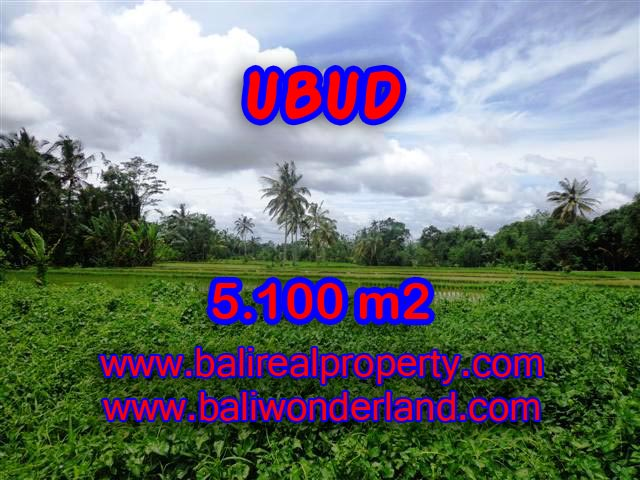 Stunning Land for sale in Bali, mountain and paddy view on river side in Ubud Bali - TJUB368