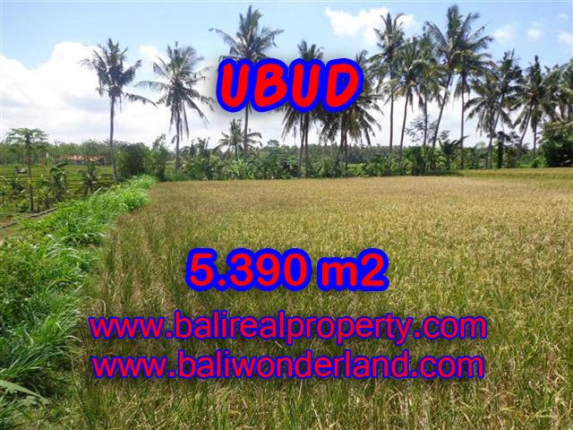 Land in Ubud Bali for sale, Outstanding view in Ubud Mas – TJUB342