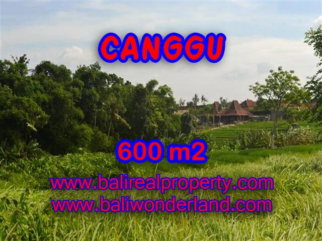 Land for sale in Bali, amazing view in Canggu – TJCG130